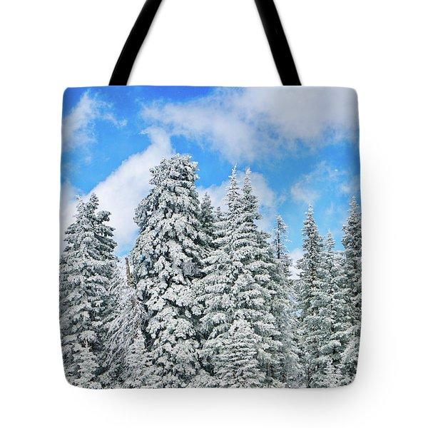 Winterscape Tote Bag by Jeff Kolker