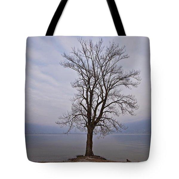 wintertree Tote Bag by Joana Kruse