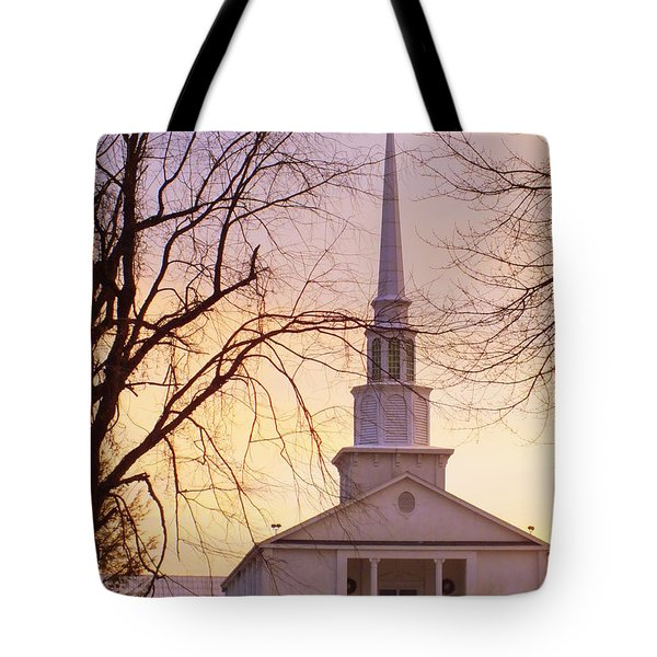 Wish You Were Here Tote Bag by Karen Wiles