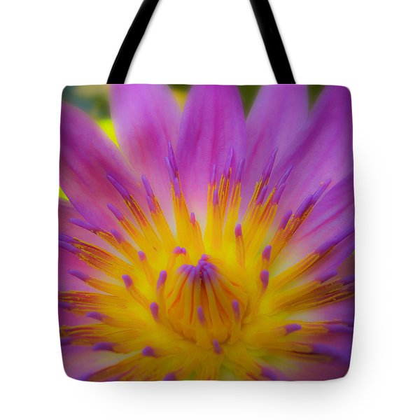 Wishing On A Star 3 Tote Bag by Rachel Cohen