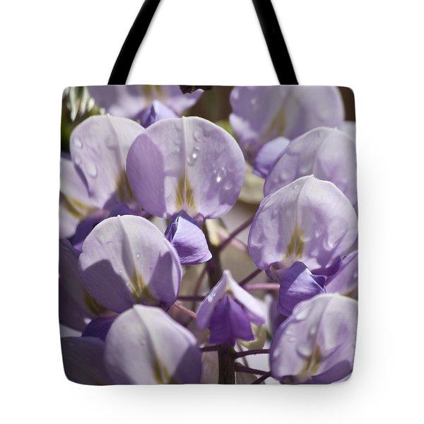 Wisteria Squared 2 Tote Bag by Teresa Mucha