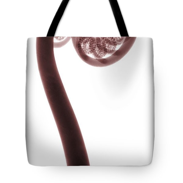 X-ray Of A Fern Tote Bag by Ted Kinsman