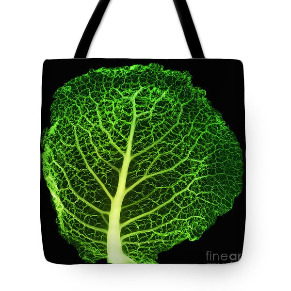 X-ray Of Cabbage Leaf Tote Bag by Ted Kinsman