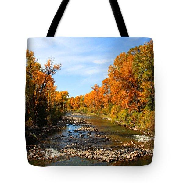 Yampa River Tote Bag by Dana Kern