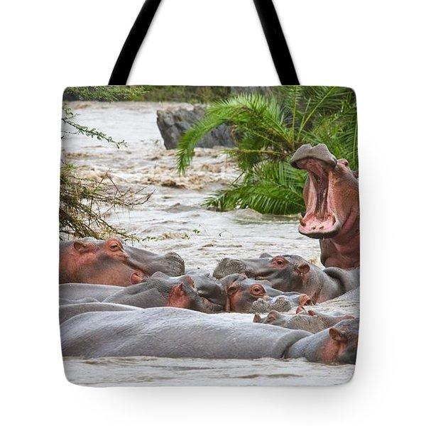Yawning Hippo Hippopotamus Amphibius Tote Bag by Carson Ganci
