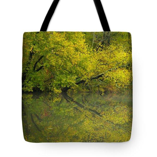 Yellow Autumn Tote Bag by Karol Livote