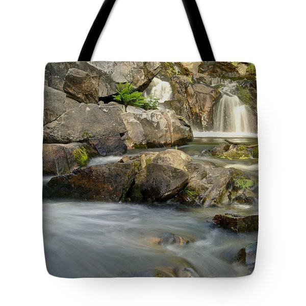 Yellow Dog Falls 4246 Tote Bag by Michael Peychich