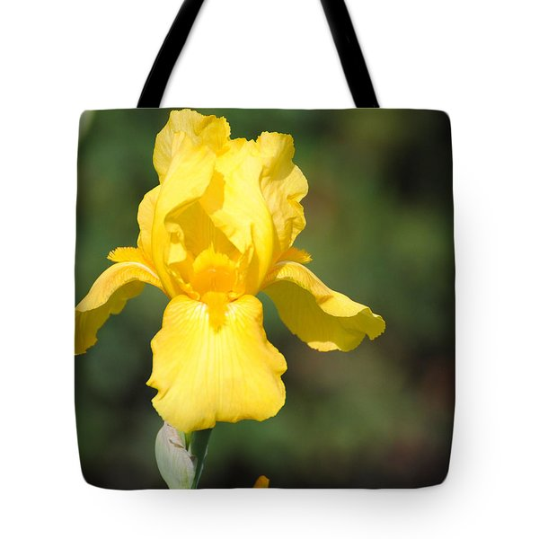 Yellow Iris Tote Bag by Jai Johnson