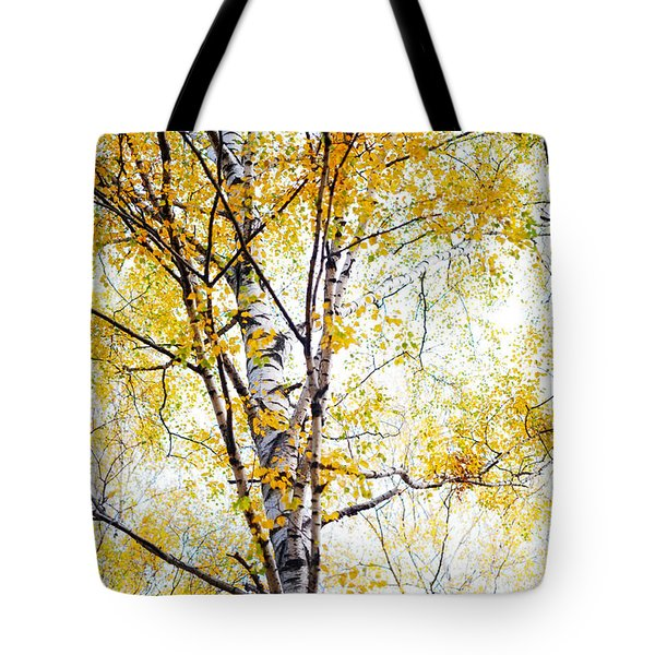 Yellow Lace Of The Birch Foliage  Tote Bag by Jenny Rainbow