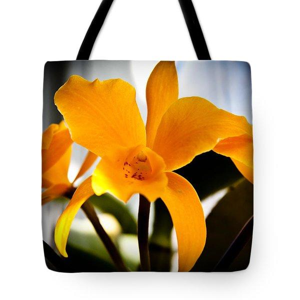 Yellow Magic Tote Bag by David Patterson