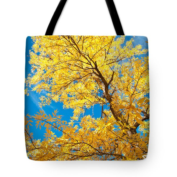 Yellow On Blue Tote Bag by Bob and Nancy Kendrick