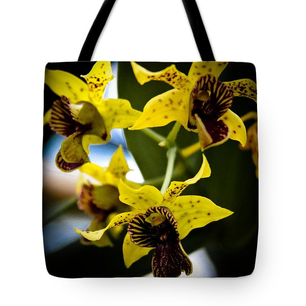 Yellow Orchids Tote Bag by David Patterson