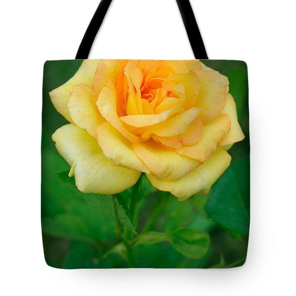 Yellow Rose Tote Bag by Atiketta Sangasaeng