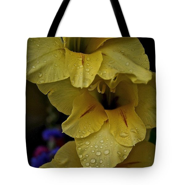 Yellow Trio Tote Bag by Susan Herber