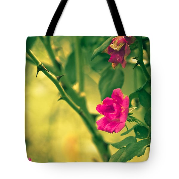 Yesterday In The Garden Tote Bag by Kim Henderson