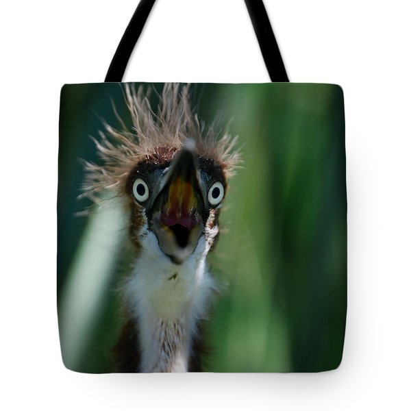 Yikes Tote Bag by Skip Willits