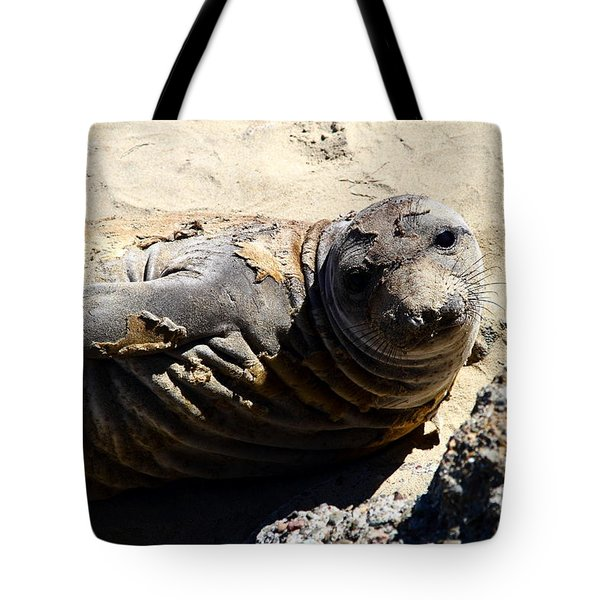 Young Elephant Seal Molting . 7d16091 Tote Bag by Wingsdomain Art and Photography