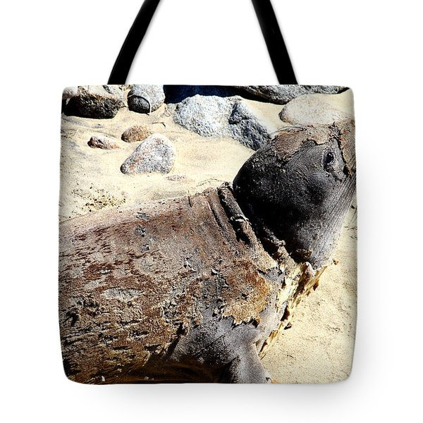 Young Elephant Seal Molting . 7D16118 Tote Bag by Wingsdomain Art and Photography