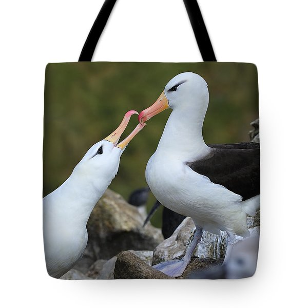 You're The One Tote Bag by Tony Beck