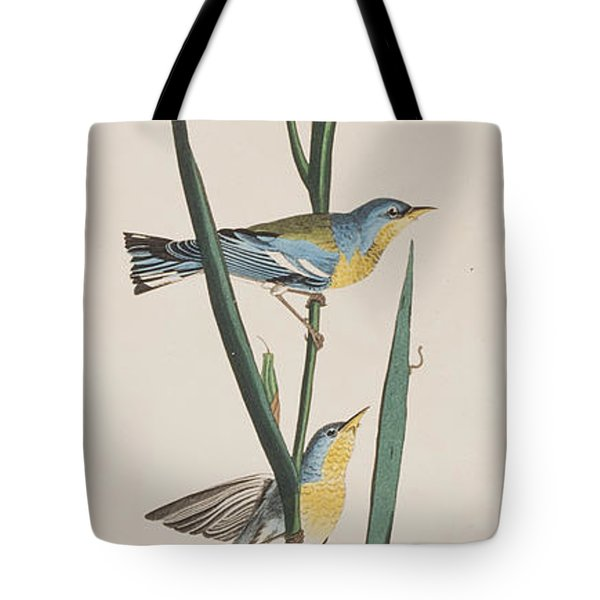 Blue Yellow-backed Warbler Tote Bag by John James Audubon