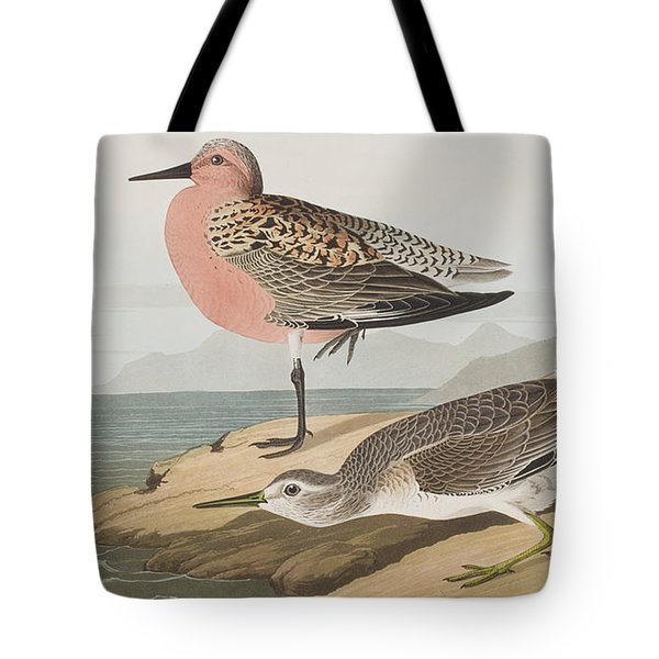 Red-breasted Sandpiper  Tote Bag by John James Audubon