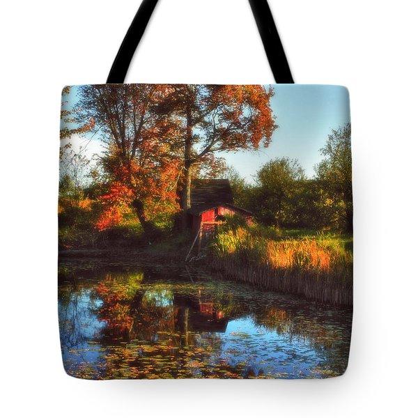Autumn Palette Tote Bag by Joann Vitali