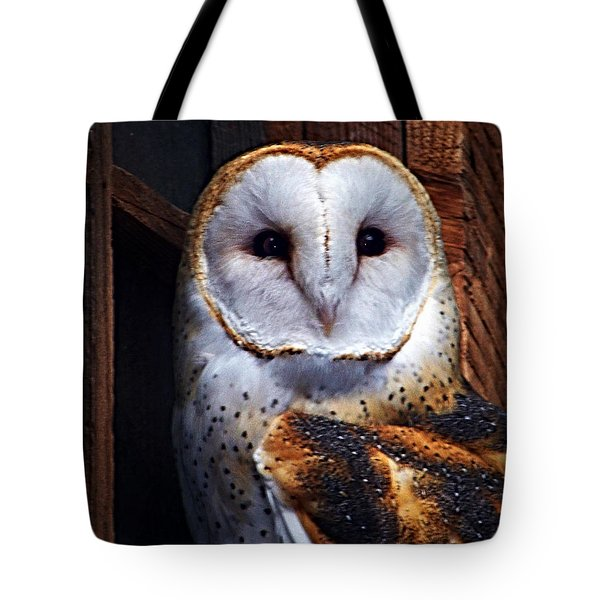 Barn Owl  Tote Bag by Anthony Jones