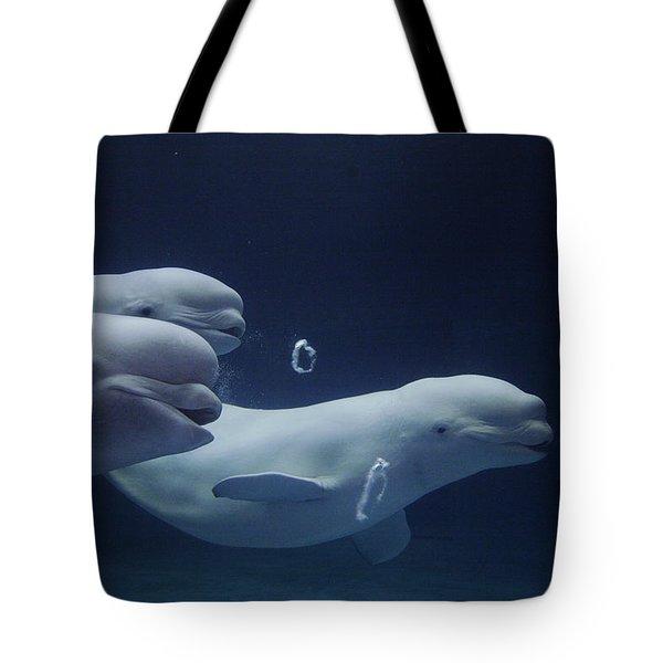 Beluga Delphinapterus Leucas Whale Trio Tote Bag by Hiroya Minakuchi