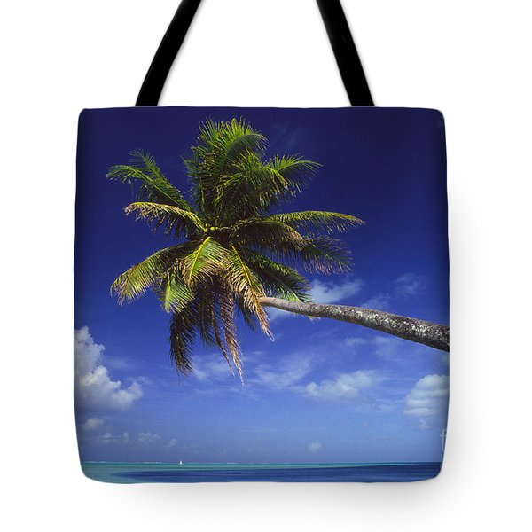 Bora Bora, Palm Tree Tote Bag by Ron Dahlquist - Printscapes