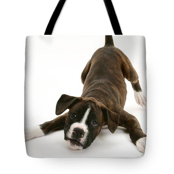 Brindle Boxer Pup Tote Bag by Jane Burton