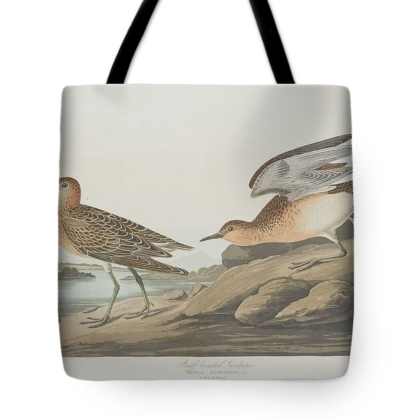 Buff-breasted Sandpiper Tote Bag by John James Audubon
