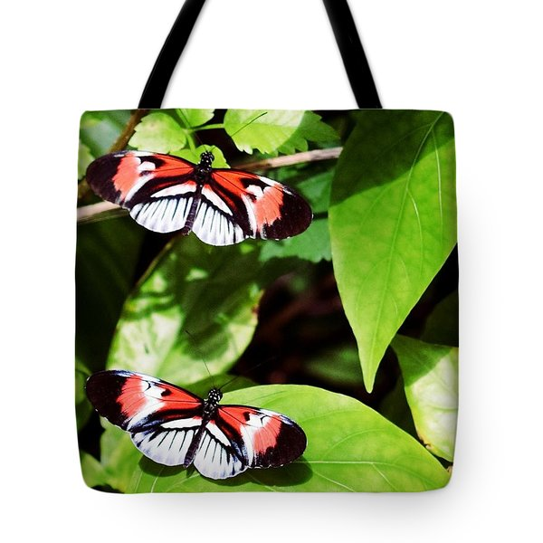 Butterflies Tote Bag by Sandy Taylor