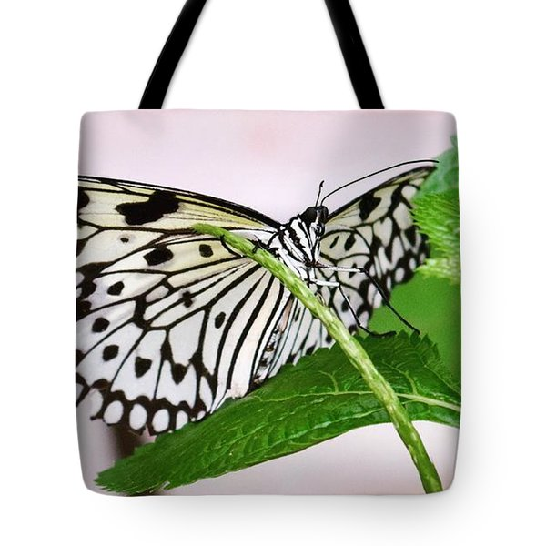 Paper Kite Butterfly No. 1 Tote Bag by Sandy Taylor
