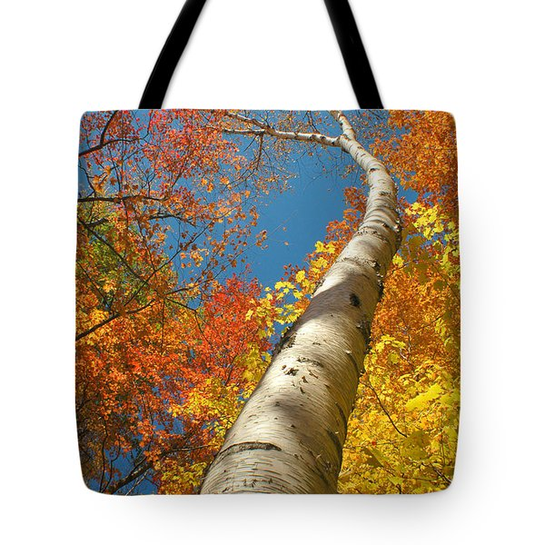 Canadian Autumn Tote Bag by Mircea Costina Photography