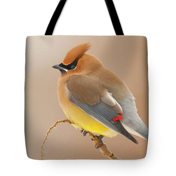 Cedar Wax Wing Tote Bag by Carl Shaw