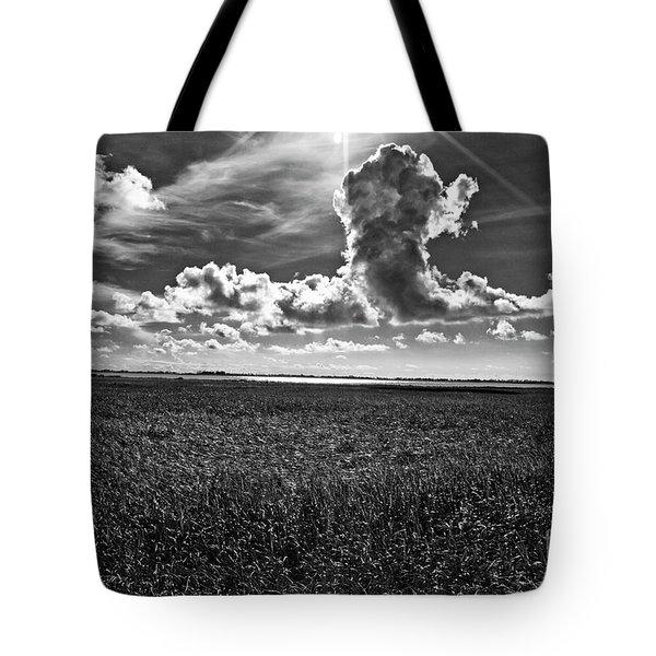 Cocodrie Marsh Tote Bag by Scott Pellegrin