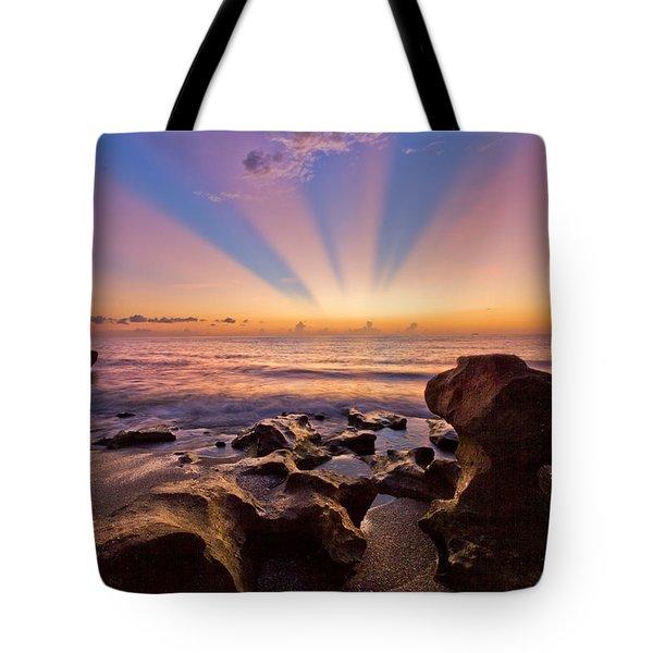 Coral Cove Tote Bag by Debra and Dave Vanderlaan
