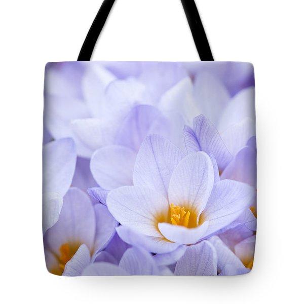 Crocus flowers Tote Bag by Elena Elisseeva