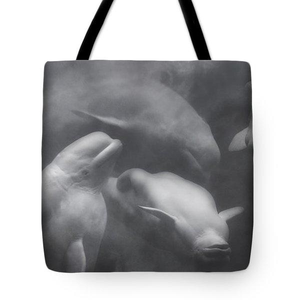 Dancing Belugas  Tote Bag by Betsy Knapp