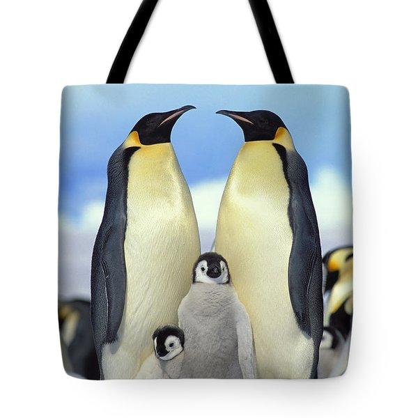 Emperor Penguin Aptenodytes Forsteri Tote Bag by Konrad Wothe