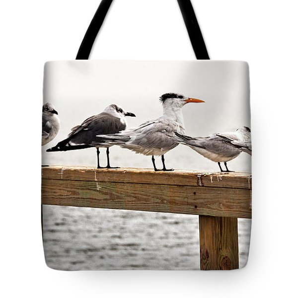 Grounded By Fog Tote Bag by Christopher Holmes