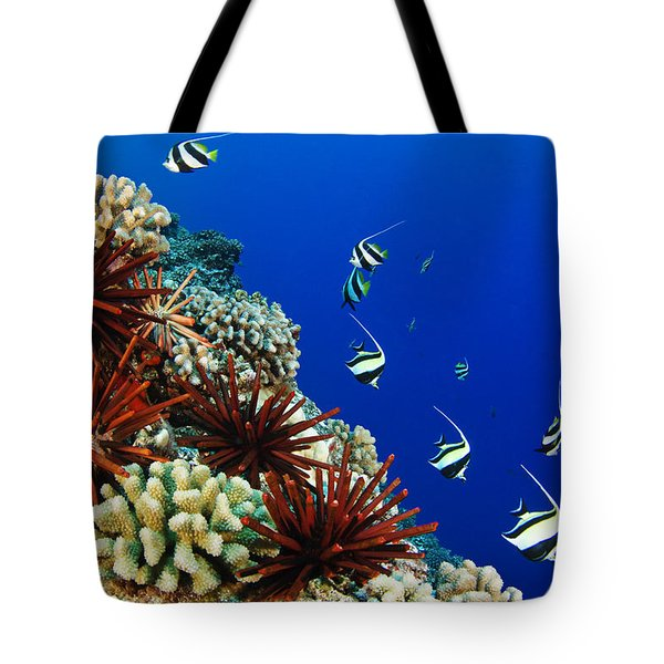 Hawaiian Reef Scene Tote Bag by Dave Fleetham - Printscapes