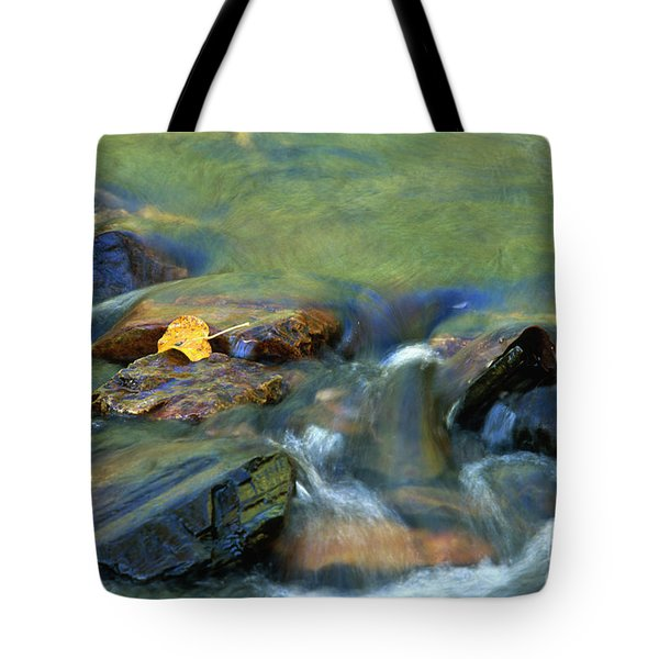 Hitching A Ride Tote Bag by Sandra Bronstein