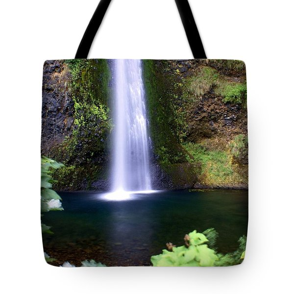 Horsetail Falls Tote Bag by Marty Koch