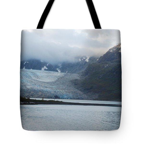 John Hopkins Glacier Tote Bag by Michael Peychich