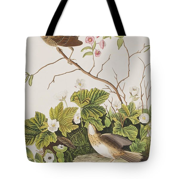 Lincoln Finch Tote Bag by John James Audubon