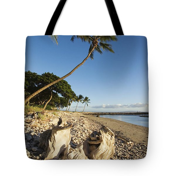 Palm And Driftwood Tote Bag by Ron Dahlquist - Printscapes