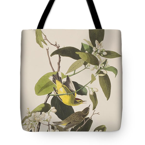 Palm Warbler Tote Bag by John James Audubon