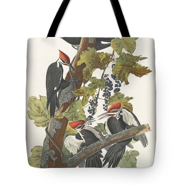 Pileated Woodpecker Tote Bag by John James Audubon