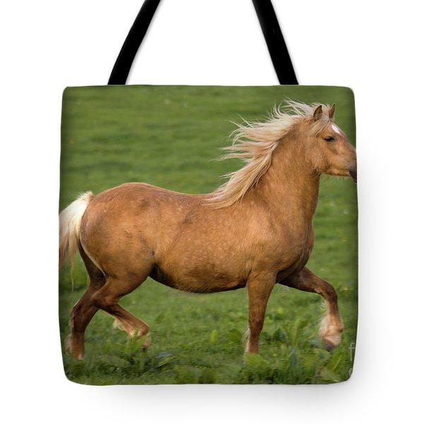 Prancing Pony Tote Bag by Angel  Tarantella